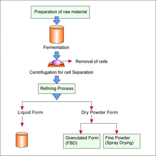 Enzyme Powder Plant Enzyme Powder Plant In India